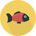 Animal, food, fish, organic, Animals, diet, Healthy Food, Sea Life SandyBrown icon