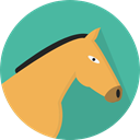 horse, zoo, Animals, Wild Life, Animal Kingdom CadetBlue icon