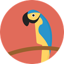 bird, zoo, parrot, Animals, Wild Life, Animal Kingdom IndianRed icon