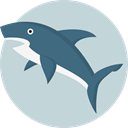 Animal, shark, Animals, Aquarium, Aquatic, Sea Life LightGray icon