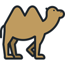 Camel, zoo, Animals, Wild Life, Animal Kingdom, Animal DarkKhaki icon