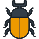 bug, insect, Animals, beetle, Animal Kingdom DarkSlateGray icon