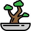 japan, plant, nature, Bonsai, Botanical Black icon