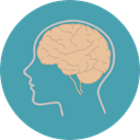 people, medical, Brain, Body Part, Body Organ, Brain Anterior, Anterior Part, Human Brain, Healthcare And Medical CadetBlue icon