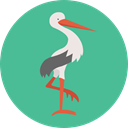 Kid And Baby, bird, baby, Animals, Stork, newborn, Birth CadetBlue icon