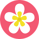 Flower, nature, petals, blossom, Botanical Salmon icon