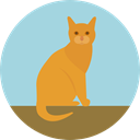 Cat, pet, Animals, Animal Kingdom LightBlue icon