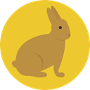 Bunny, zoo, Animals, rabbit, mammal, Wild Life, Animal Kingdom Goldenrod icon