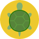 Animal, zoo, turtle, Animals, Wild Life, Animal Kingdom Goldenrod icon
