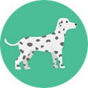 dog, pet, Animals, Breed, Dalmatia CadetBlue icon