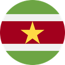 world, flag, Suriname, flags, Country, Nation DarkRed icon