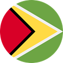 Nation, world, flag, Guyana, flags, Country OliveDrab icon