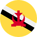 world, flag, Brunei, flags, Country, Nation SandyBrown icon