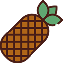 food, Fruit, organic, natural, pineapple, vegetarian, vegan, Healthy Food, Food And Restaurant Maroon icon