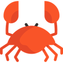 Animals, Aquarium, Beach, summer, Crab, Crabs, Summertime, Sea Life, food, Food And Restaurant Tomato icon
