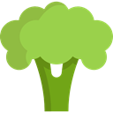 Broccoli, Healthy Food, Food And Restaurant, vegetables, Foods, vegetarian, vegan, food, Supermarket, vegetable YellowGreen icon