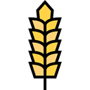food, nature, Wheat, Grain, grains, Wheat Grain, Wheat Plant, Farming And Gardening Black icon