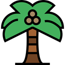 summer, tropical, Summertime, Palm Tree, Botanical, Ecology And Environment, nature, Beach MediumSeaGreen icon