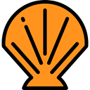 Mollusk, Sea Life, Scallop, shells, ocean, Animals, Shellfish DarkOrange icon