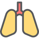 medical, Lung, Healthcare And Medical, organ, Lungs, Breath, Anatomy Khaki icon