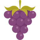food, Fruit, fruits, Berries, grape, Berry, Grapes, Bouquet, Food And Restaurant DimGray icon