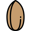 food, vegetarian, vegan, Healthy Food, Nuts, Almond, Food And Restaurant DarkKhaki icon