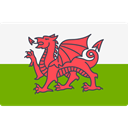 world, flag, Wales, flags, Country, Nation Olive icon