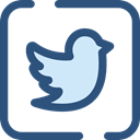 Logo, twitter, Logos, Brands And Logotypes, social media, social network, logotype DarkSlateBlue icon