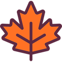 maple leaf, Botanical, plant, Leaf, nature, garden Tomato icon