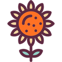 Flower, nature, sunflower, petals, blossom, Botanical DarkSlateGray icon