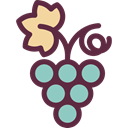 fruits, Berries, grape, Berry, food, Fruit, Grapes, Bouquet, Food And Restaurant DarkSlateGray icon