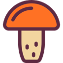 food, Mushroom, nature, Fungi, Muscaria, Food And Restaurant DarkSlateGray icon