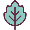 plant, Leaf, nature, leave, garden, leaves, Botanical SkyBlue icon