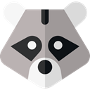 Animal, zoo, Animals, racoon, Wild Life, Animal Kingdom DarkGray icon