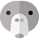 Face, Animal, head, Front, Animals, walrus, outline, Frontal, Outlined, Sea Cow DarkGray icon