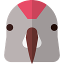 bird, Animal Kingdom, Macaw, pet, zoo, Animals, Wild Life DarkGray icon