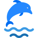 Animal, dolphin, Animals, Aquarium, Aquatic, Sea Life Black icon