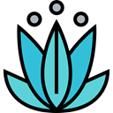 nature, oriental, Yoga, lotus, meditation, Chakra, hinduism MediumTurquoise icon