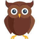 bird, hunter, owl, Animals, wisdom SaddleBrown icon