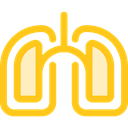 Lung, Healthcare And Medical, medical, organ, Lungs, Breath, Anatomy Gold icon