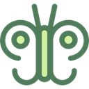 insect, butterfly, Animals, Moths DimGray icon