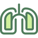 medical, organ, Lungs, Breath, Anatomy, Lung, Healthcare And Medical DimGray icon