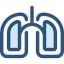 medical, organ, Lungs, Breath, Anatomy, Lung, Healthcare And Medical DarkSlateBlue icon