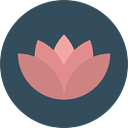 nature, garden, lotus, blossom, Flower, Botanical DarkSlateGray icon