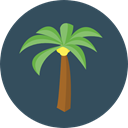 Summertime, Palm Tree, Botanical, Beach, summer, tropical, nature DarkSlateGray icon