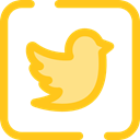 social media, social network, logotype, Logos, Logo, twitter, Brands And Logotypes Gold icon