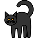 scary, fear, Terror, Animals, spooky, Black cat, pet, halloween, horror DarkSlateGray icon