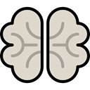 people, medical, Brain, Body Part, Body Organ, Brain Anterior, Anterior Part, Human Brain, Healthcare And Medical LightGray icon