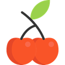 vegan, Healthy Food, Food And Restaurant, food, Fruit, organic, diet, Cherry, cherries, vegetarian Tomato icon