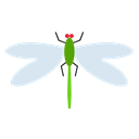 insect, nature, fly, insects, Dragonfly Black icon